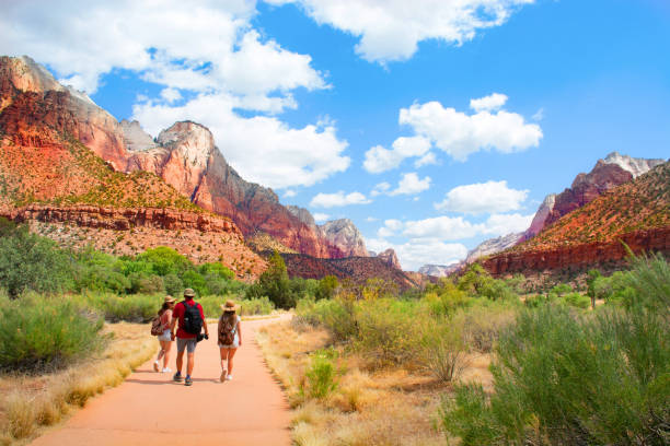 Family on hiking trip in the mountains walking on pathway. People on hiking trip in the mountains walking on pathway. Zion National Park, Utah, USA zion national park stock pictures, royalty-free photos & images