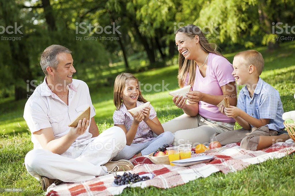 Family Picnic in park royalty-free stock photo