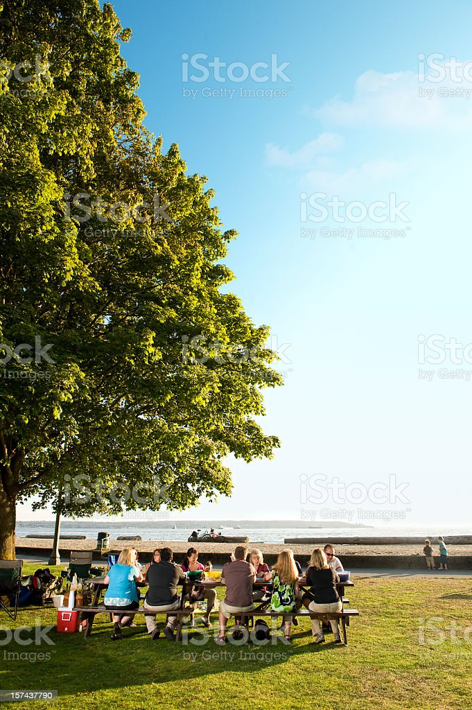 A family picnic on a beautiful day stock photo
