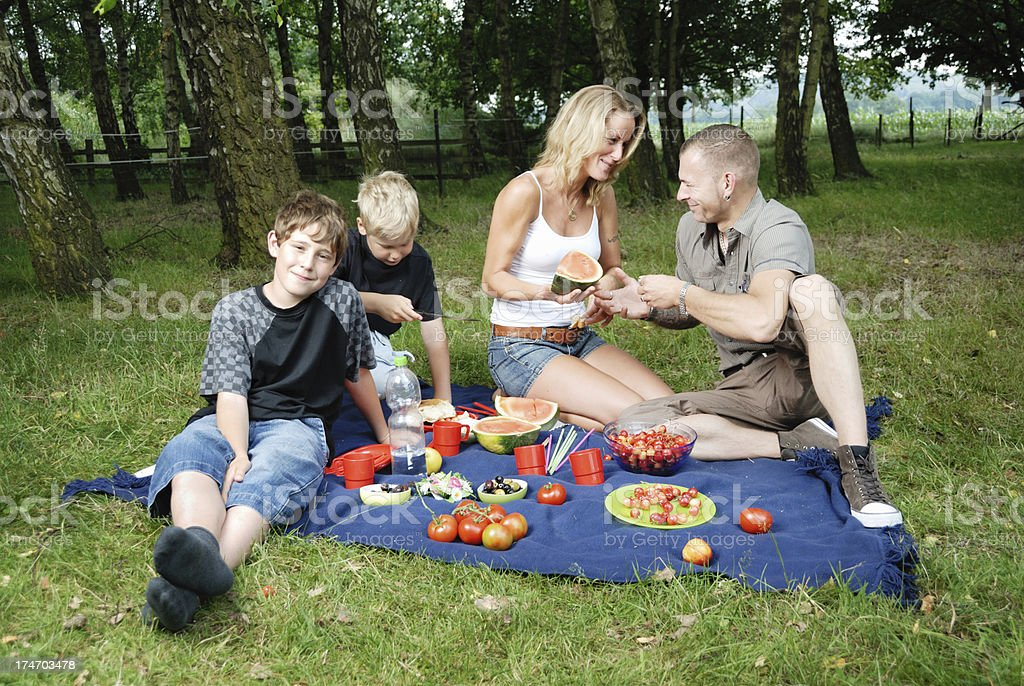 family picnic royalty-free stock photo