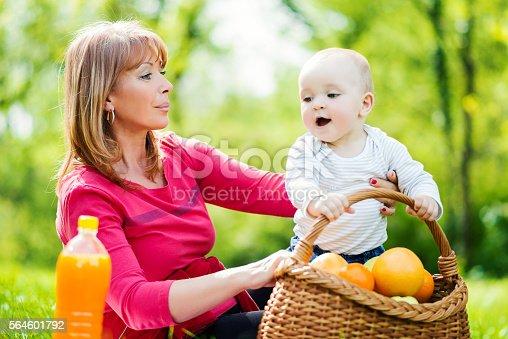 640349426istockphoto Family picnic 564601792