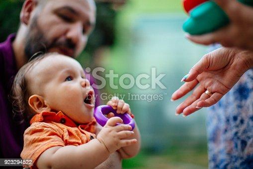istock Family picnic 923294522