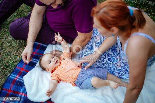 istock Family picnic 923297330