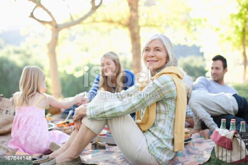 istock Family picnicking together outdoors 167644148