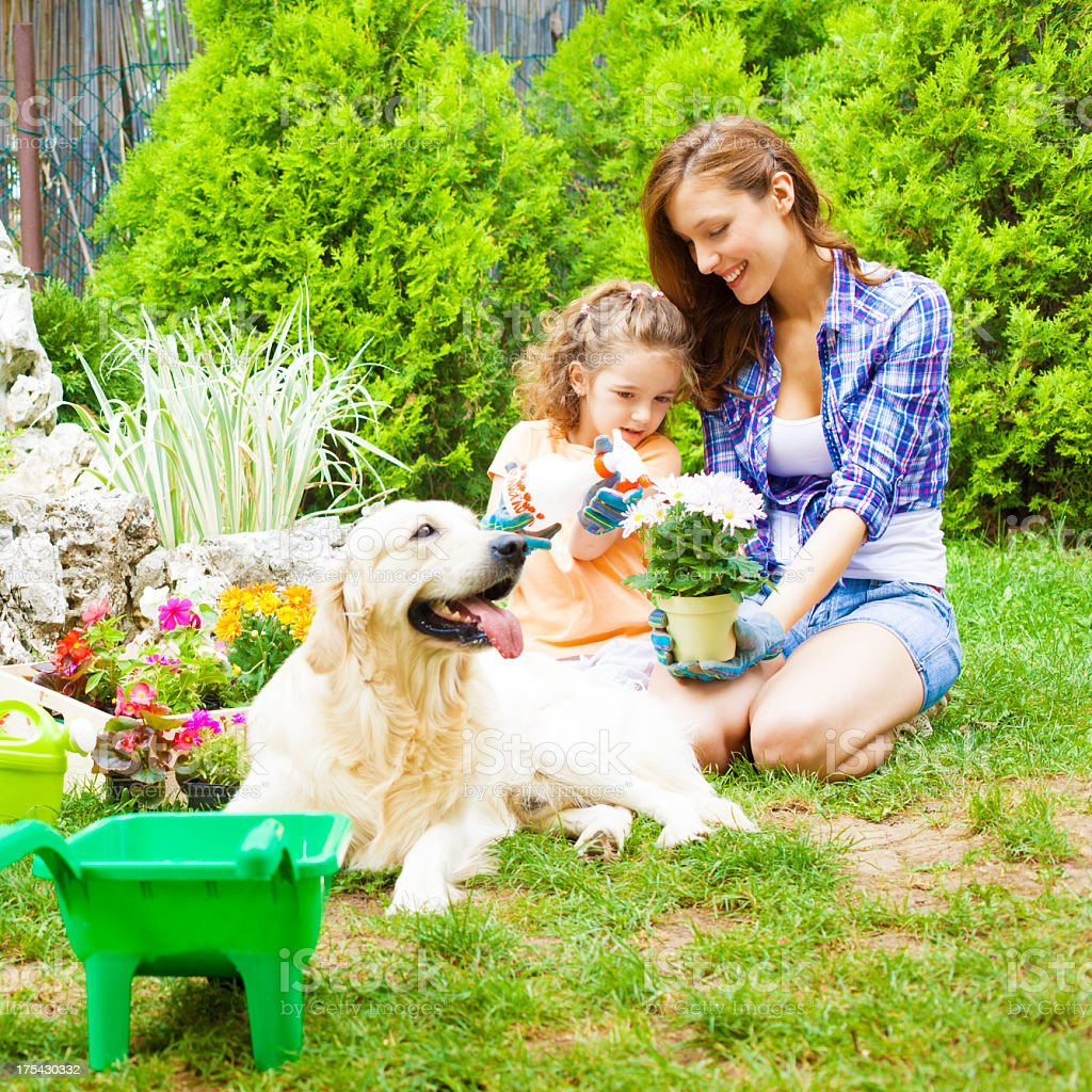 Family Planting Flowers Together. royalty-free stock photo