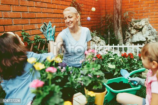 istock Family Planting Flowers Together. 526727226
