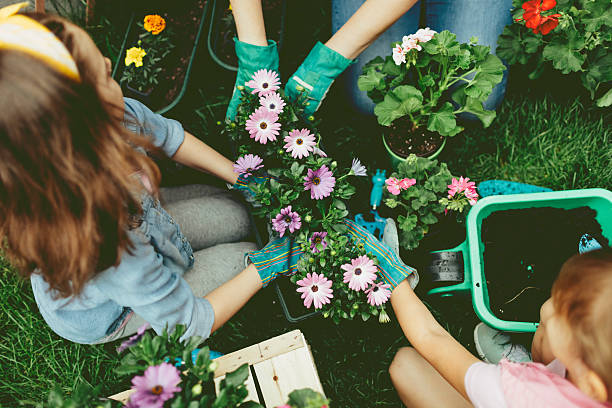 familia plantando flores juntos. - jardinería fotografías e imágenes de stock