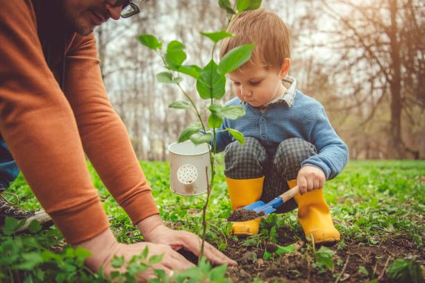 arbre de plantation de famille sur le jour d'arbor au printemps - plante photos et images de collection
