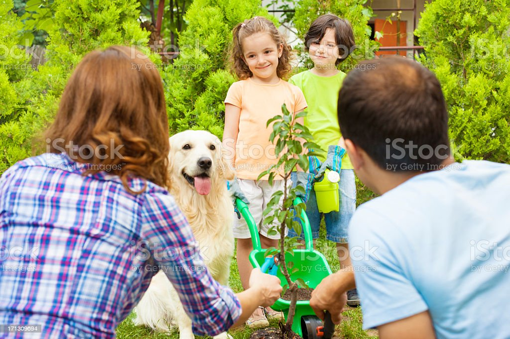 Family Planting Tree Together stock photo