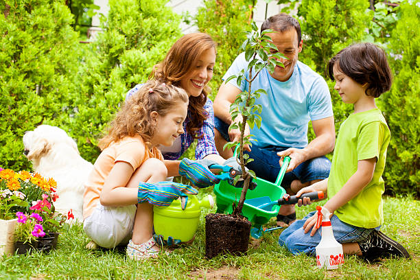 Family Planting Tree Together. stock photo