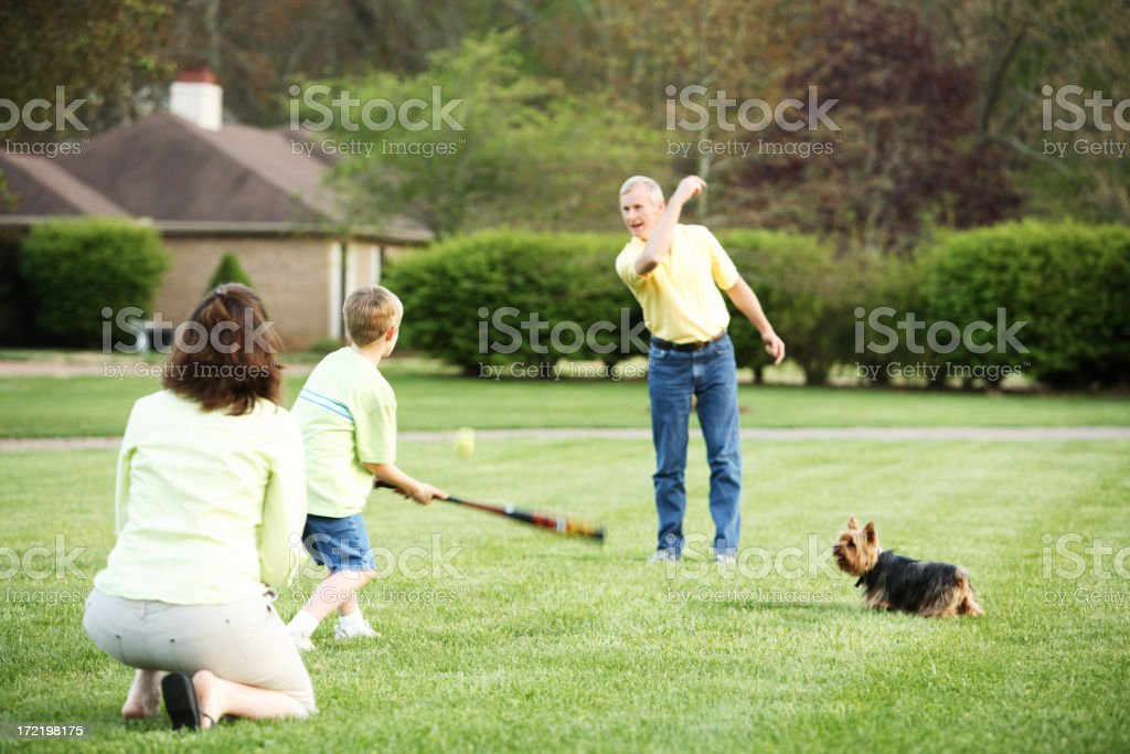 Family playing baseball in the garden stock photo