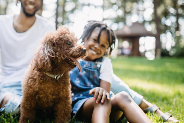 Family Playing In Park With Dog A cute young African American family enjoys relaxation time in a city public park with their pet poodle.  Shot in Tacoma, Washington. pierce county washington state stock pictures, royalty-free photos & images