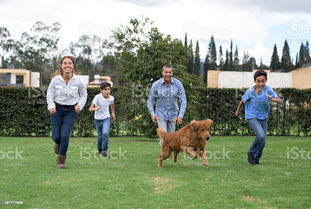 Family playing outdoors with their dog stock photo