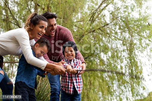 509813720 istock photo Family plays around the lake 1141360673
