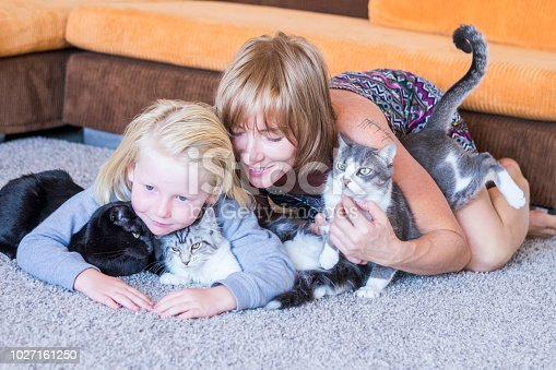 istock family portrait with  caucasian mother blonde beautiful middle age woman and young white skin son and two lovely adorable cats. group hug with persons and animals. best friends forever together concept 1027161250
