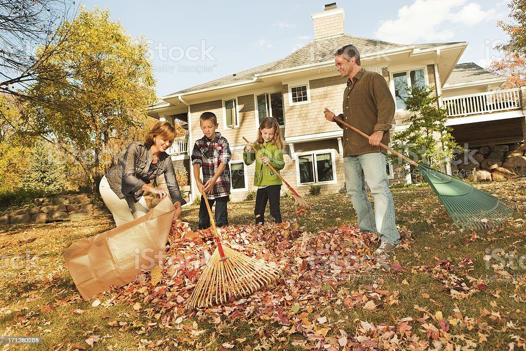 Family Raking Autumn Leaves, Outdoors Team Together in Home Yard stock photo