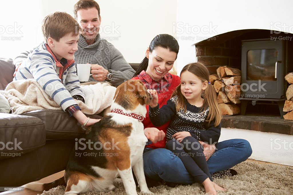 Family Relaxing Indoors And Stroking Pet Dog stock photo