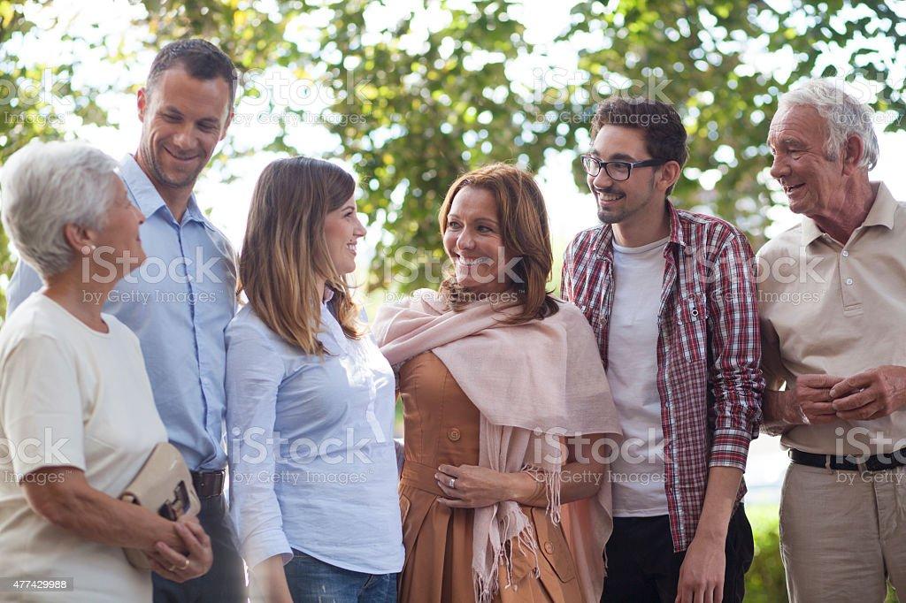 Family reunion outdoors stock photo
