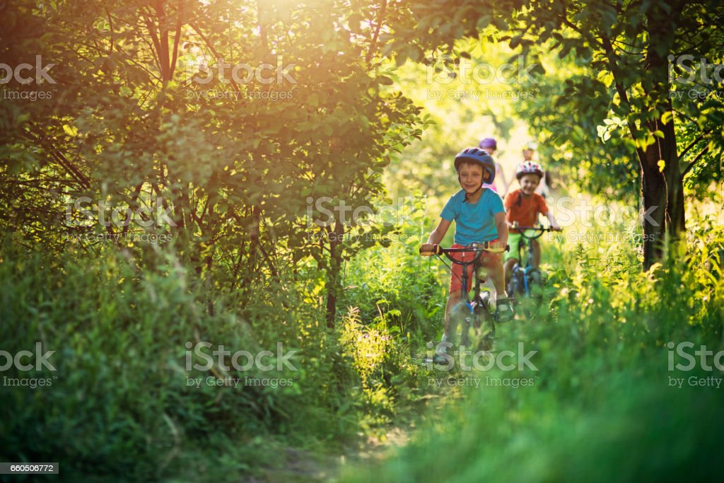 Family riding bicycles on beautiful forest path stock photo