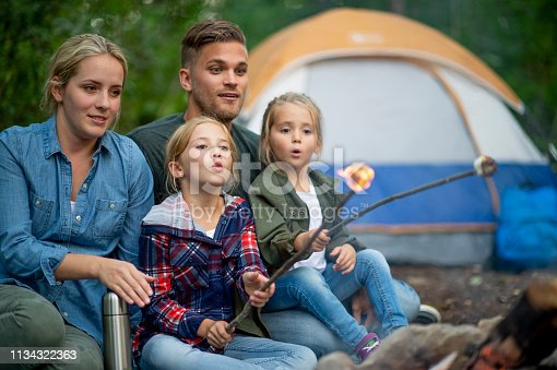 istock Family roasting marshmallows in campground 1134322363
