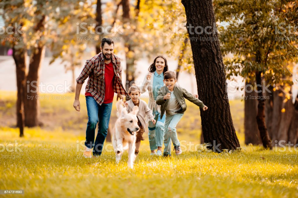 family running after dog stock photo