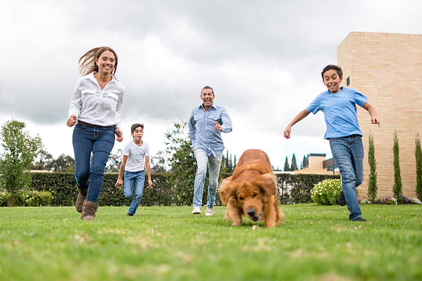 Family running outdoors with their dog picture id488079706?b=1&k=6&m=488079706&s=612x612&w=0&h=pbvia157c2f oa q4x1p0hpne501x0xacisr8xgl7e4=