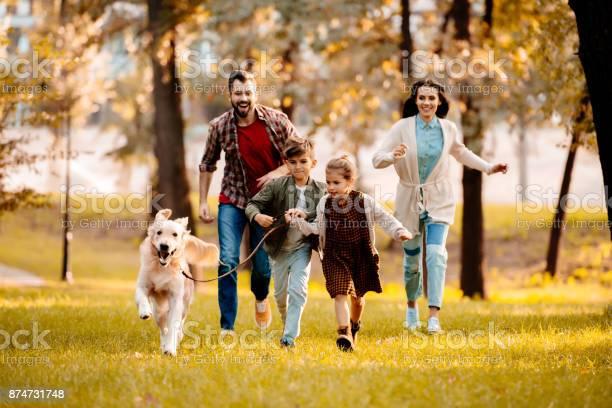 Family running with dog in park picture id874731748?b=1&k=6&m=874731748&s=612x612&h=7cqoqqsvivfthemcqhjdxnukl48cmdpr0alrzphehsy=
