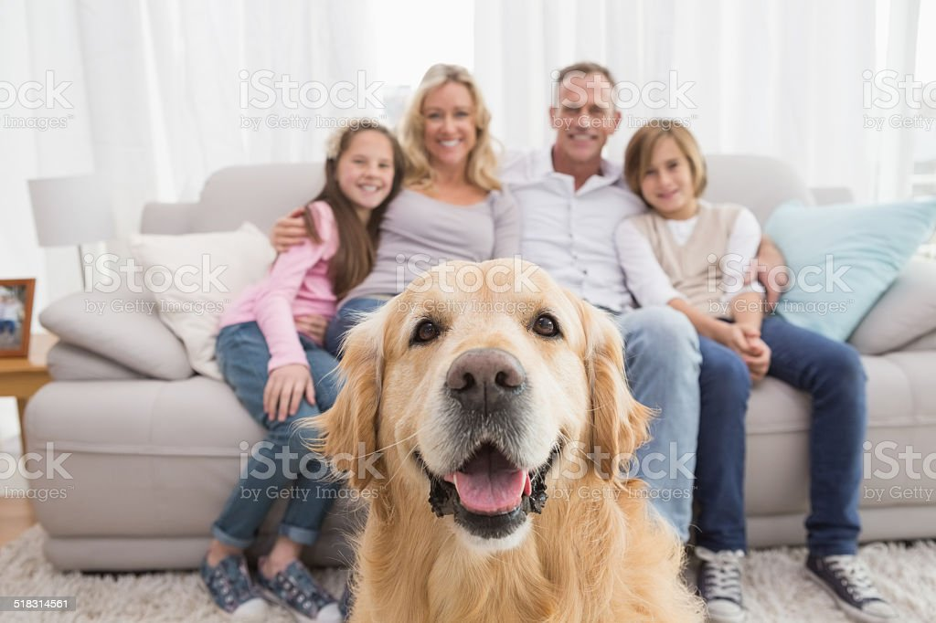 Family sitting on the couch with golden retriever in foreground stock photo