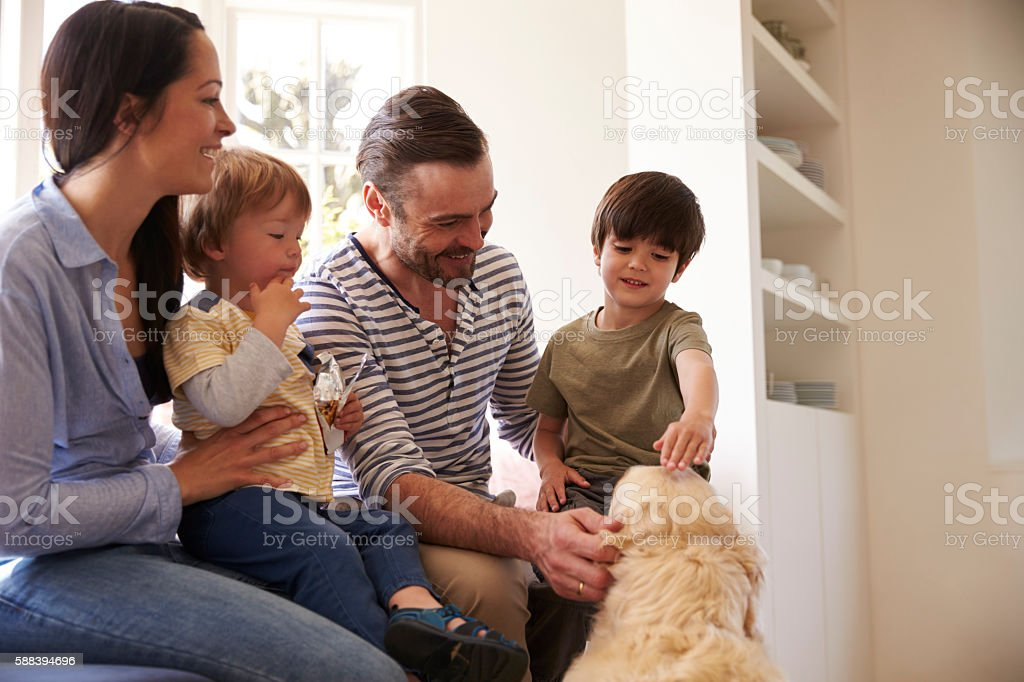 Family Sitting On Window Seat At Home With Golden Retriever stock photo