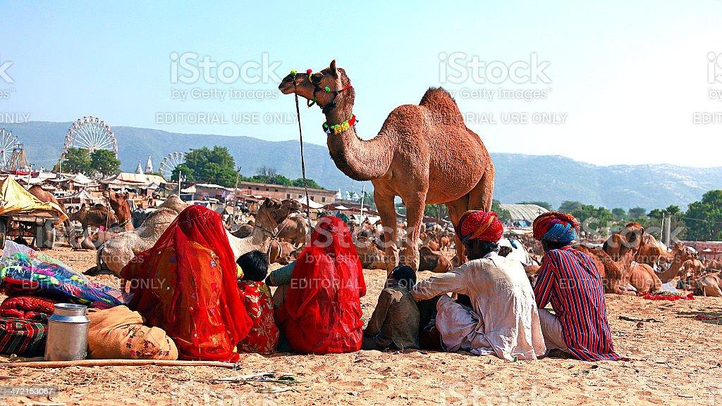 family sitting togather at pushkar fair stock photo