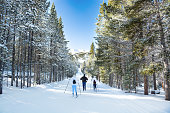 Breckenridge, Colorado/ USA-December 25 2018. Family cross-country skiing in Breckenridge Nordic Center. People nordic skiing in snowy forest on winter vacation.