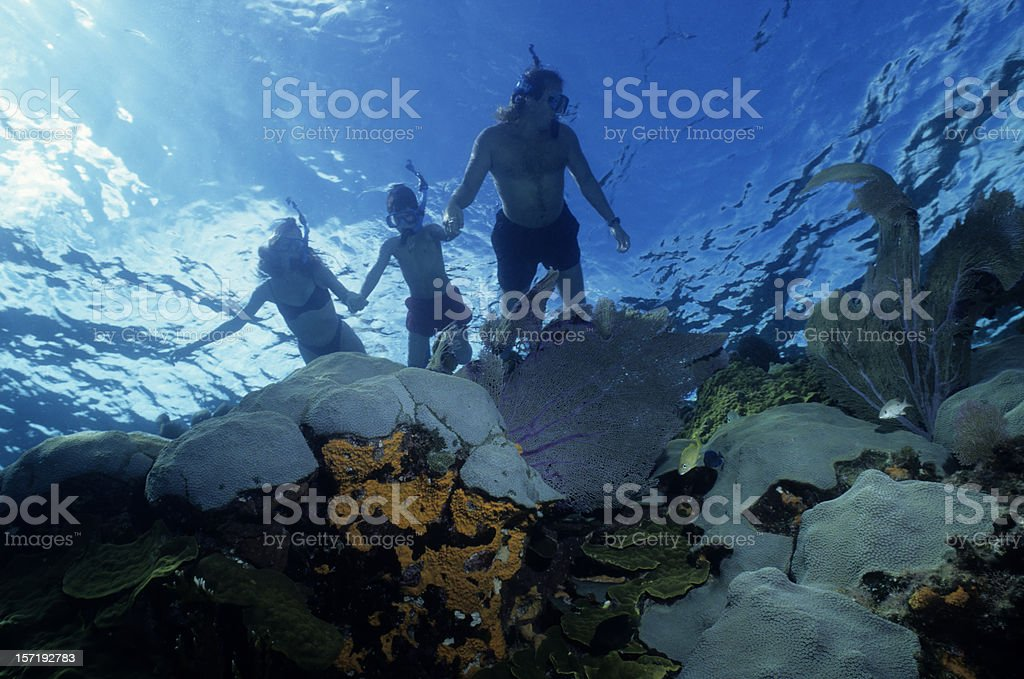 Family Snorkeling royalty-free stock photo