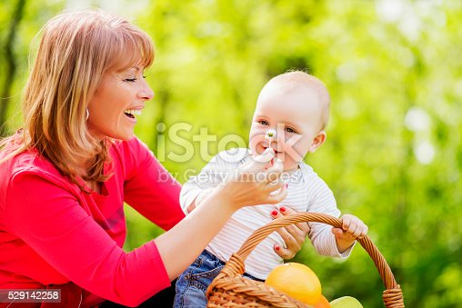 istock Family spending leisure time at park 529142258