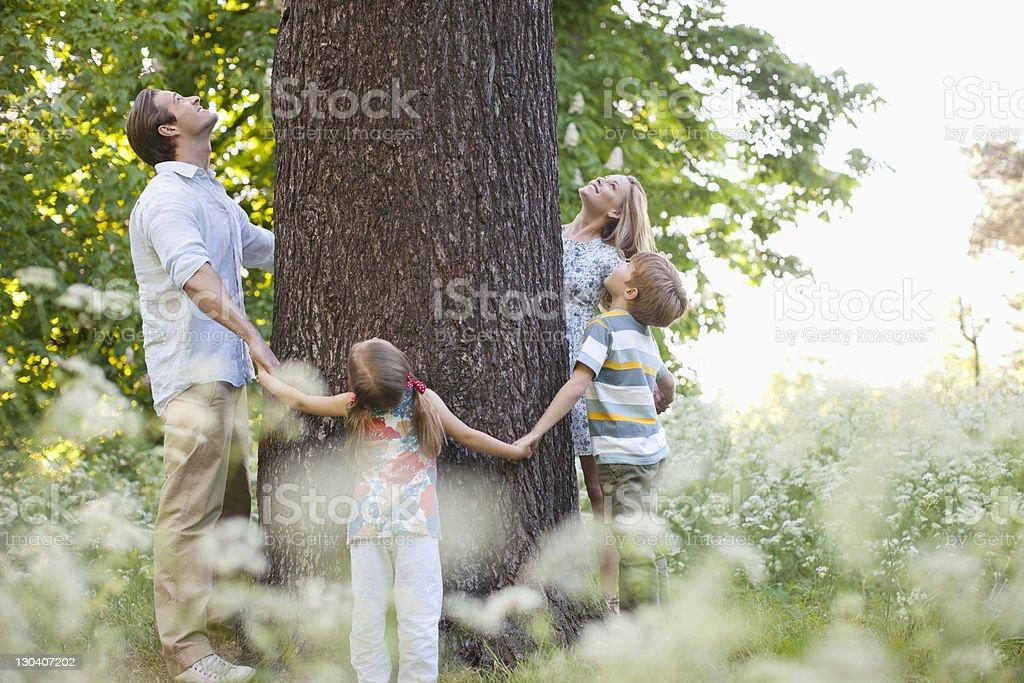 Familie stehen im Kreis um tree – Foto