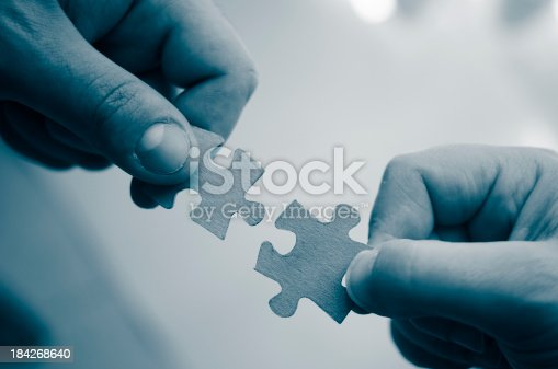 173706624istockphoto Family teamwork - puzzle connection 184268640