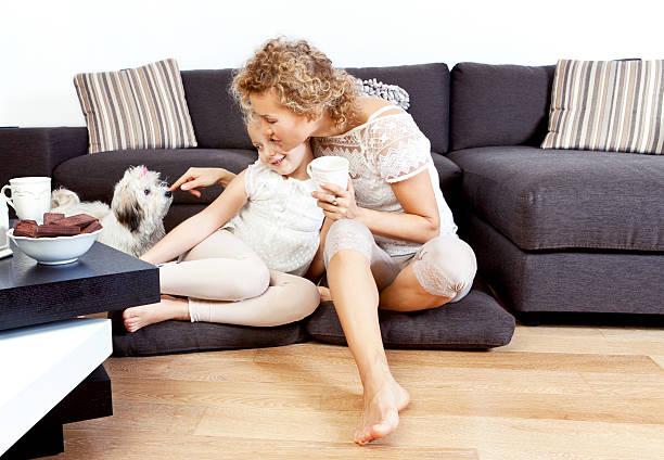 zeit für die familie - hunde strumpfhosen stock-fotos und bilder