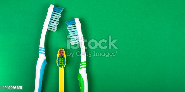 istock family toothbrushes on a green background oral care caries prevention free space close-up 1219076455