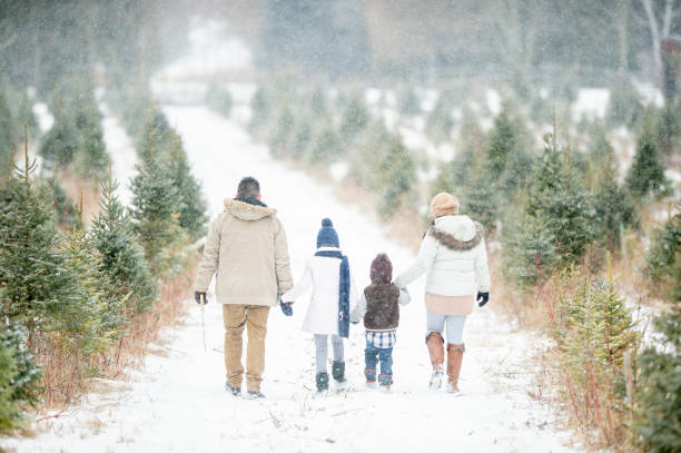 Family tradition A cute little family walks through a snowy Christmas tree farm. They are all holding hands and are dressed warmly. tradition stock pictures, royalty-free photos & images