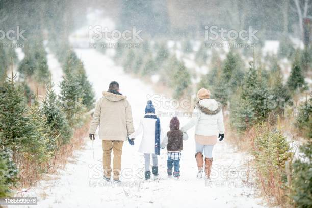Photo of Family tradition