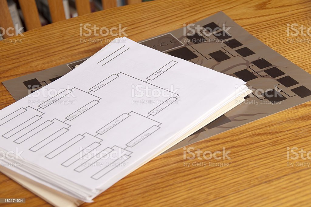Family tree and Diagram royalty-free stock photo
