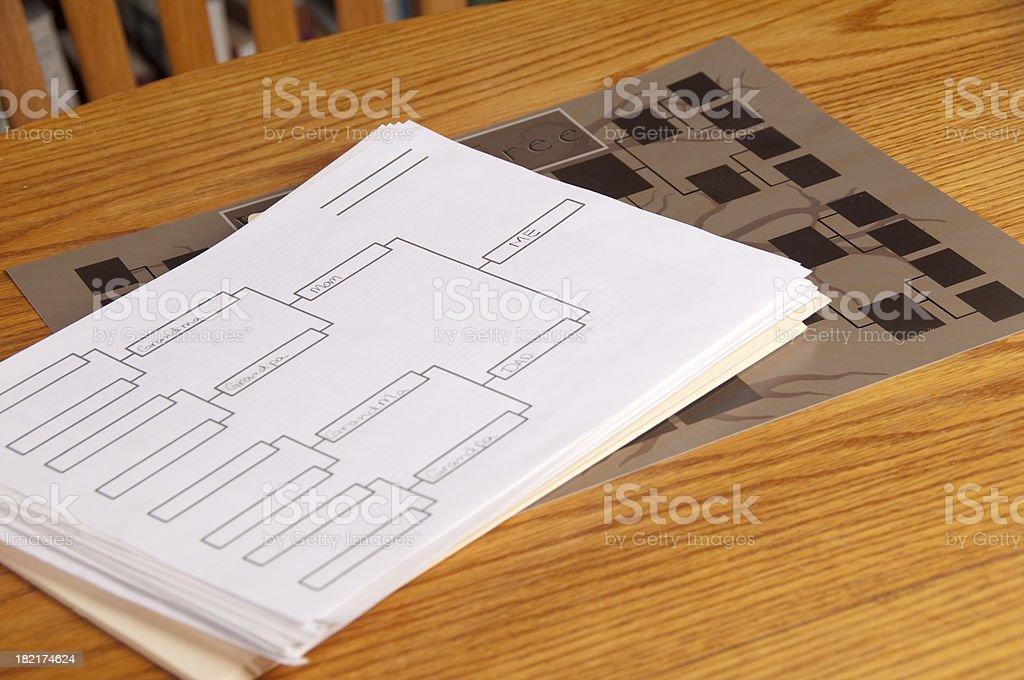 Albero genealogico e diagramma - foto stock