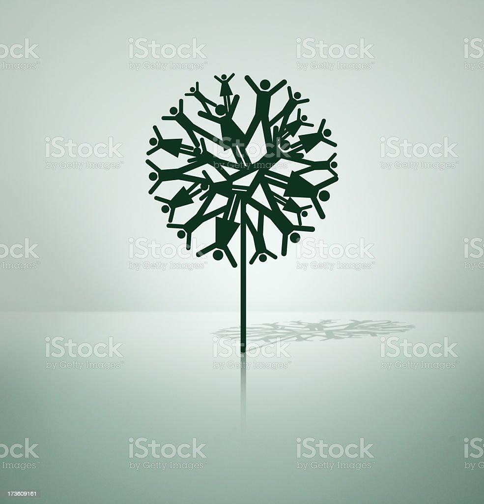 Family Tree stock photo