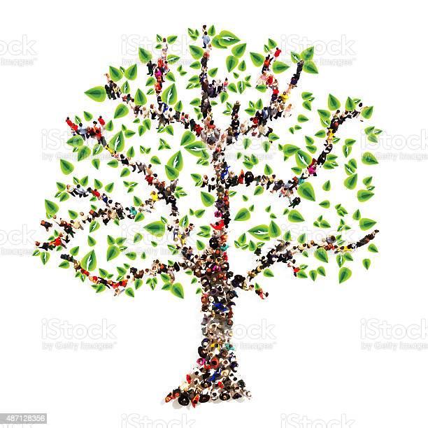 Family tree picture id487128356?b=1&k=6&m=487128356&s=612x612&h=kyezfqq6tvzr1cjfbrxgl368fas5v9c67jecsbadqwe=