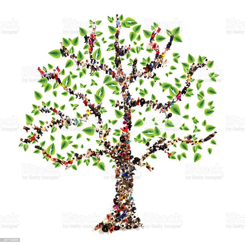 Árbol genealógico - foto de stock