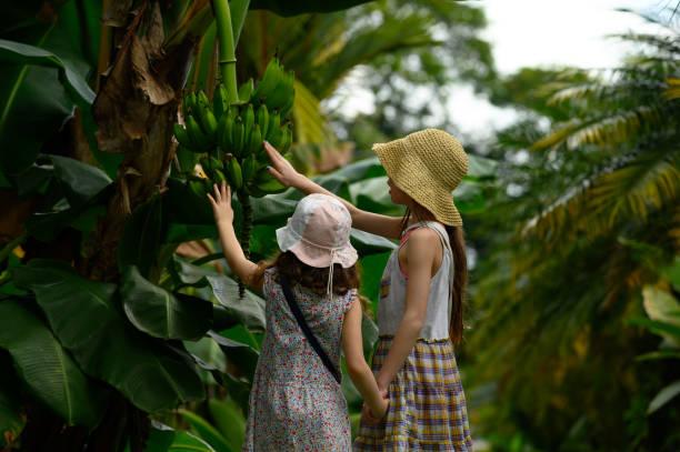 Familienurlaub in einem tropischen Klima – Foto