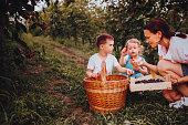 istock Family walk in a blackberry field 1265310773