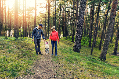 family walk in the forest