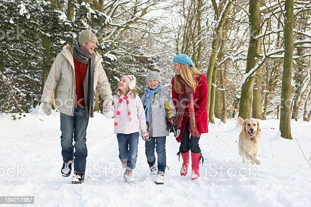 Family walking dog through snowy woodland picture id134217387?b=1&k=6&m=134217387&s=612x612&h=bterrmarwmj0kjxyflnwl6fdppgx2lijujlxm01j2fc=