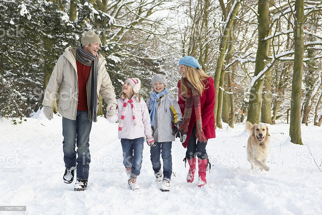 Family Walking Dog Through Snowy Woodland stock photo