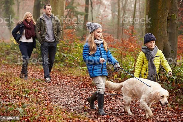 Family walking dog through winter woodland picture id501360479?b=1&k=6&m=501360479&s=612x612&h=bu6 uaj4v0p1inqkxrfpixojpxujjuzmahqjnnmosjc=